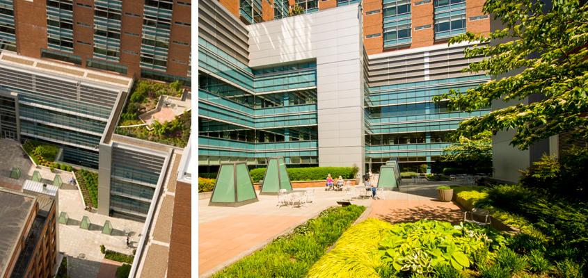 portland cancer center