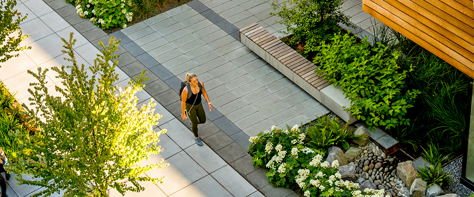 Mayer Reed Landscape Architecture Visual Communications